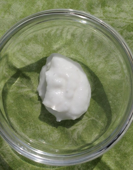 Camellia Cream Sample