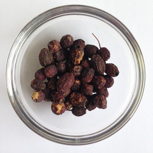 Hawthorn Berries 510 px