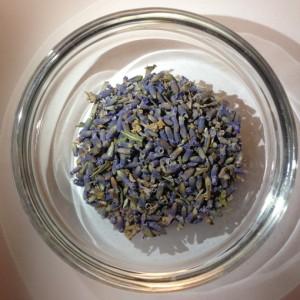 Lavender 510 px